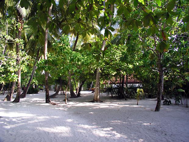 Camere e bungalow a thudufushi prima dei lavori di for Piccoli piani di costruzione dell hotel