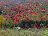 I colori in autunno nel New England