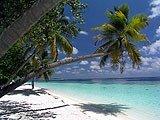 Snorkeling a Thudufushi, isole Maldive