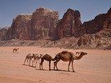 Deserto Wadi Rum (Giordania)