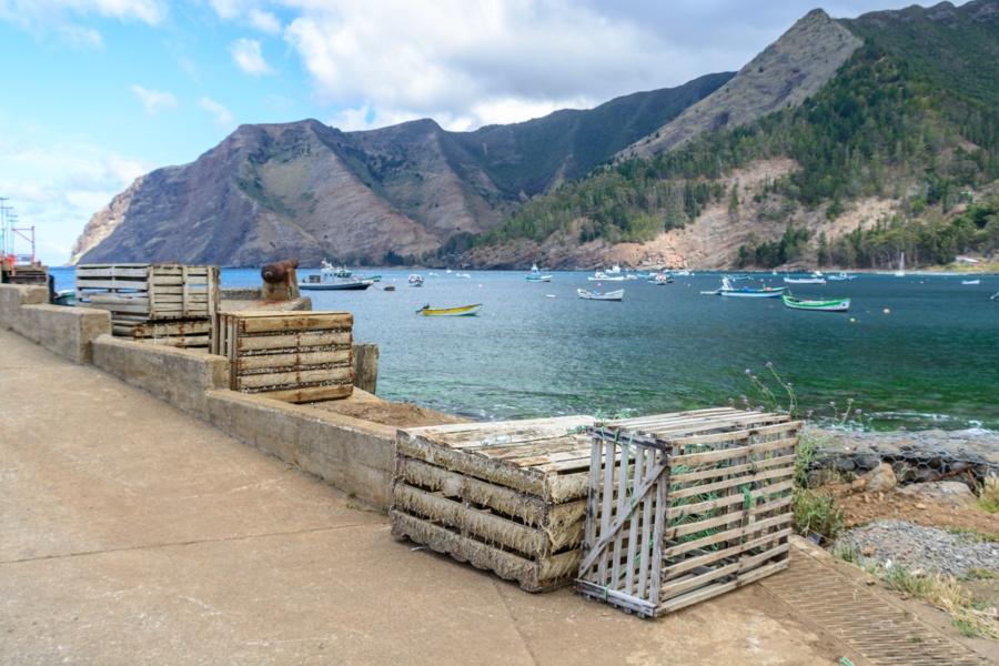 L isola di robinson crusoe juan fernandez in cile for Dsc allarmi